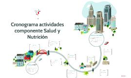 Cronograma actividades componente Salud y Nutrición