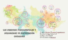 LOS DERECHOS FUNDAMENTALES Y MECANISMOS DE PROTECCION CIUDAD