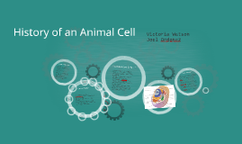History of a Cell