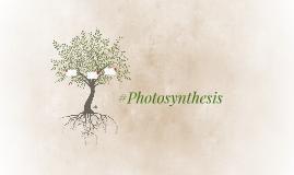 #Photosynthesis