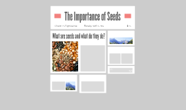 The Importance of Seeds