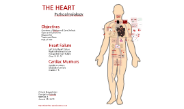 Heart Failure & Cardiac Murmurs