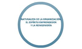 Copy of NATURALEZA DE LA ORGANIZACIÓN, EL ESPÍRITU EMPRENDEDOR Y LA REINGENIERÍA