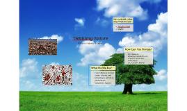 TREEting Nature