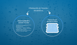 Copy of ELIMINACIÓN DE DESECHOS METABÓLICOS