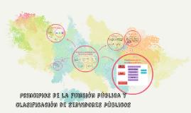 Principios de la función pública y clasificación de servidor