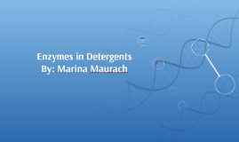 Enzymes in detergents