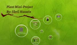 Plant Mini-Project