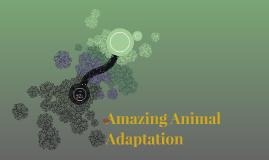 Amazing Animal Adaptation