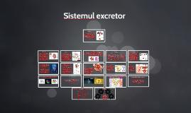 Sistemul excretor