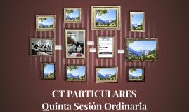 CT PARTICULARES