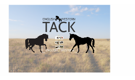 English and Western Tack; Structure Vs Function