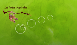 Les forêts tropicales