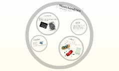 Biologie - Mitochondrien