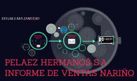 Copia de informe Pelaez Hermanos S.A