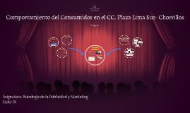 Comportamiento del Consumidor en el CC. Plaza Lima Sur- Chor