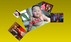 stylux current fasion