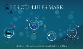 Les cèl·lules mare