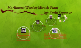 Marijuana; Weed or Miracle Plant