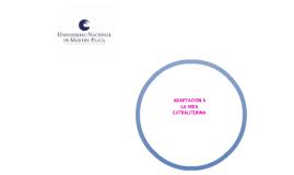 adaptacion a la vida extrauterina