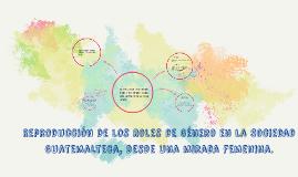 Reproducción de los Roles de Género en la Sociedad Guatemalt