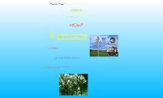 """""""Piezo-Tree"""""""