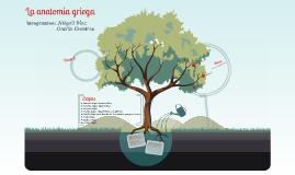 Anatomía Griega