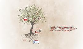 Pengelolaan Hutan Berkelanjutan dalam Konteks  REDD+ Berbasi