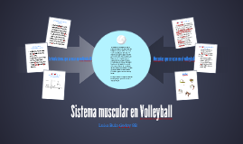 Sistema muscular en volleyball