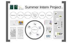 Internship Project #2