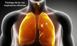 Fisiología de las vías respiratorias inferiores