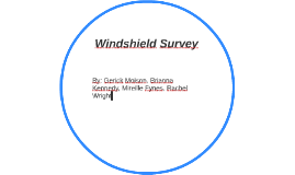 Windshield Survey