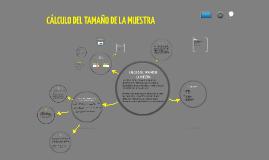 Copy of Tamaño de la muestra