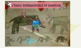 école Expérimentale de bonneuil