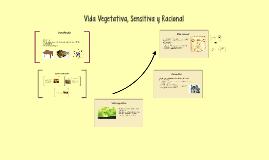 Copy of Vida Vegetativa, Sensitiva y Racional