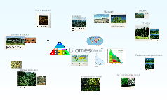 biomes land