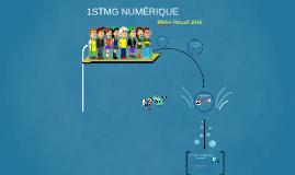 1STMG numérique 2016