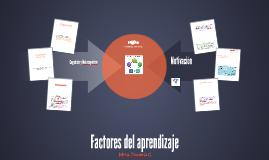 Factores del aprendizaje