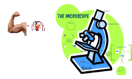 Copy of The microscope