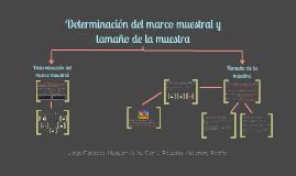 Copy of Determinación del marco muestral y tamaño de la muestra
