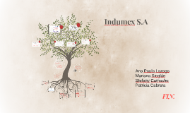 Indumex S.A