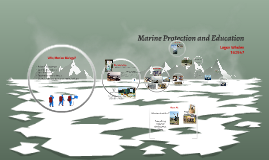 Marine Protection and Education