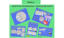 OBJETIVOS INTERMEDIOS Y FINALES DE COSTE
