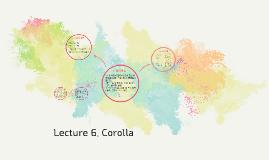 Lecture 6. Corolla
