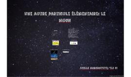 Une autre particule élémentaire: le muon