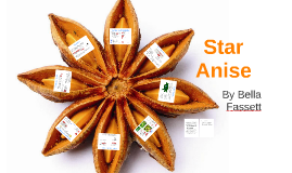 Spice Project- Star Anise