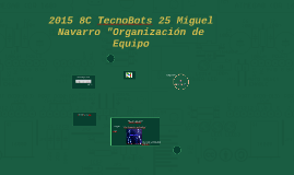 2016 8C TecnoBots 25 Organizacion de Equipo