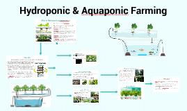 Hydroponics Farmer