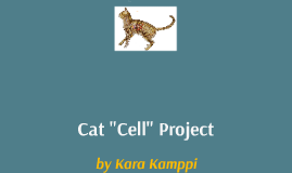 """Cat """"Cell"""""""