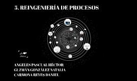 5. REINGENIERÍA DE PROCESOS